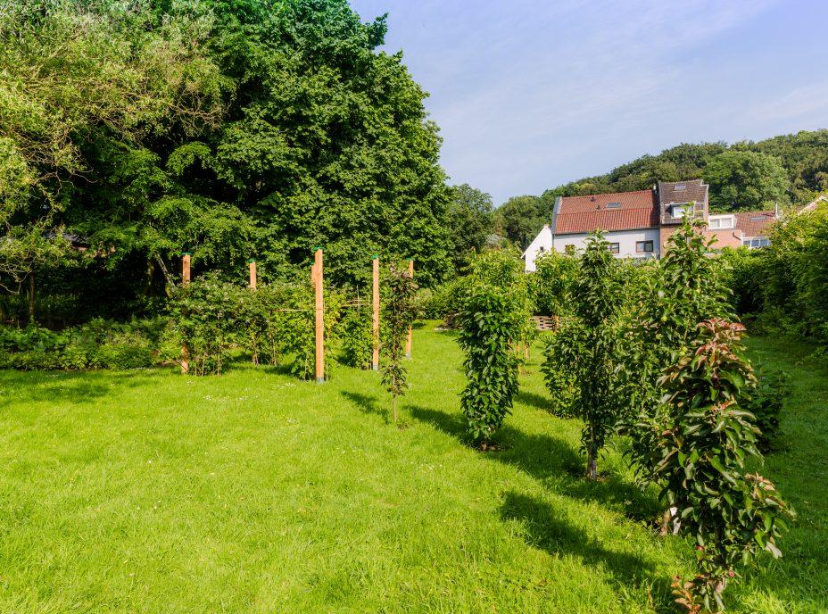 bed and breakfast, educo boerderij, tuin, vakantie