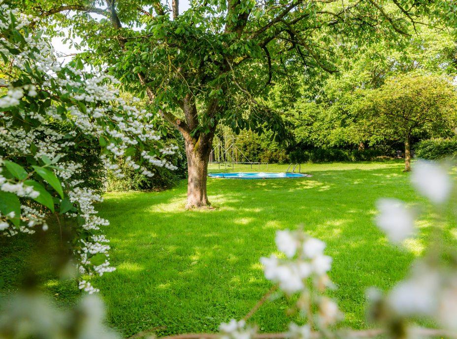 bed and breakfest, educo boerderij, tuin, vakantie, zwembad